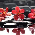 Tête de lit orchidée - Design