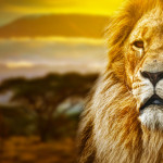 Tête de lit lion - Visuel