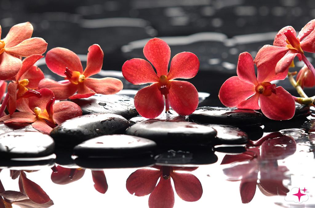Tête de lit florale - Design