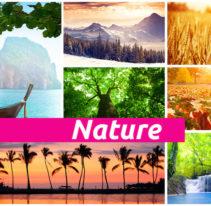 Tête de lit Nature - Plaque compact - PLANOVISION