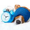 expressions populaires sur le sommeil